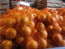 Nanfeng orange39