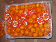 Nanfeng orange49