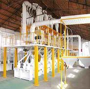 maize flour milling plant