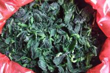 Frozen Spinach(IQF Spinach)