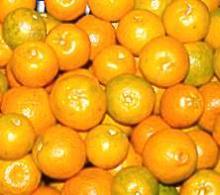 Orange Pulp Sulphited