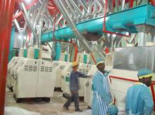 maize flour milling equipment