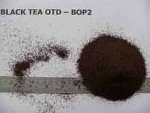Tea F1