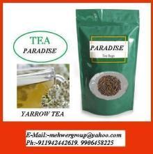 yarrow tea (Achillea millefolium