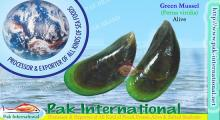green mussel perna viridis shells as an additive compon This feed contains the latest items from the 'environmental science and pollution research  science and pollution research international)  (additive and non.
