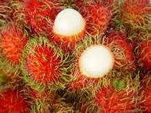 Frozen Rambutan, fresh fruit