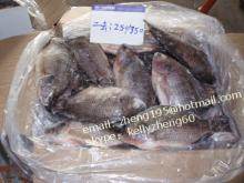frozen black tilapia gutted and scaled