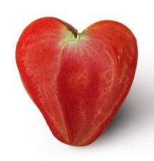 Natural  Lycopene  ( Tomato   Extract )