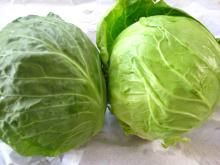 Chinese round cabbage002