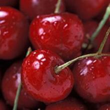 Cherry distillate 100%natural in bulk