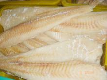 Frozen Pacificus Cod Fillets