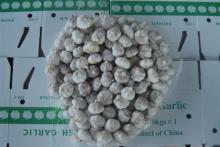 2012   new   garlic  from china