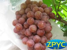 chinese grape