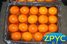 Ganzhou fresh navel orange