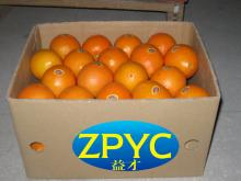 supply navel orange