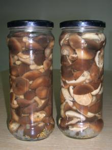 canned shiitake marinated