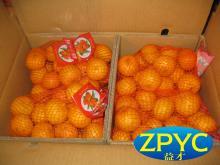 fresh nanfeng mandarin 2015