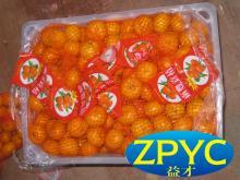 Baby nanfeng mandarin