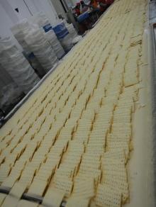 Soda Cookies(Milk and Orginal,manufactory)