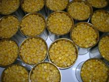 Canned Vacuum Packed Sweet Corn kernels with easy open lid dw285g