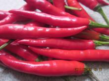 Yunnan   Hot  Pepper With Best Taste
