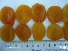 Dried Apricot (Turkish)