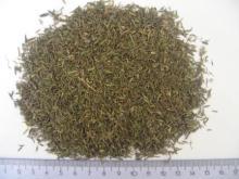 Thyme Thymi products,Poland Thyme Thymi supplier