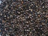 buckwheat hulls/husks
