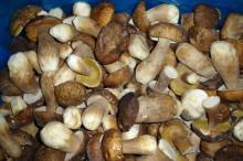 Замороженные белые грибы