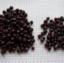2011 Organic Dried Blueberries