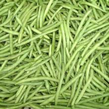 2012 Frozen green beans