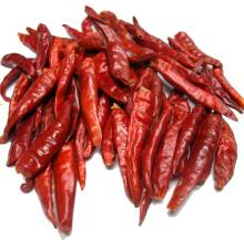 Air Dehydrated Red Chilli