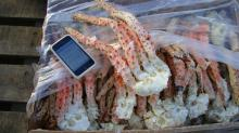 Argentine King Crab Clusters