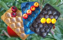 39x59cm Many Calibers Fruit tray Liners