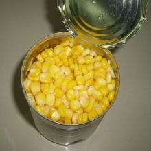 Fresh/ Frozen/ Canned Corn