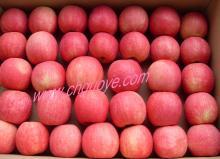 2012 Pink Lady Apple