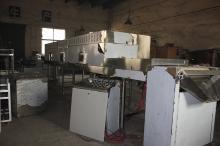continuous conveyor belt cocoa powder sterilizer