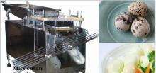 Sale stainless steel quail egg shelling or peeling machine