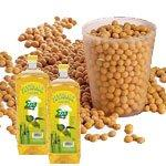 best quality soybeans oil
