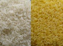 JAPONICA RICE/ ROUND RICE/ PEARL RICE/ CALROSE RICE