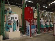 complete   equipment  for grain processsing