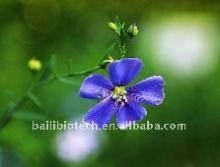 flax seed oil (organic)