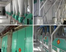 Complete Wheat Flour Milling Plant, maize mill