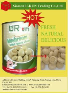 Canned mushroom whole