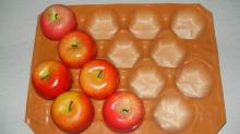 China Made Fruit PP Plastic Tray