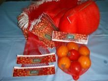 China Made High Quality Many Sizes Plastic Mesh Net Bag