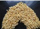 pine nuts kernels with low prices