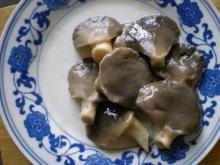 pleurotus ostreatus mushroom in brine