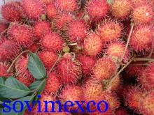 Vietnam Rambutan