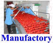 tomato paste 30-32HB